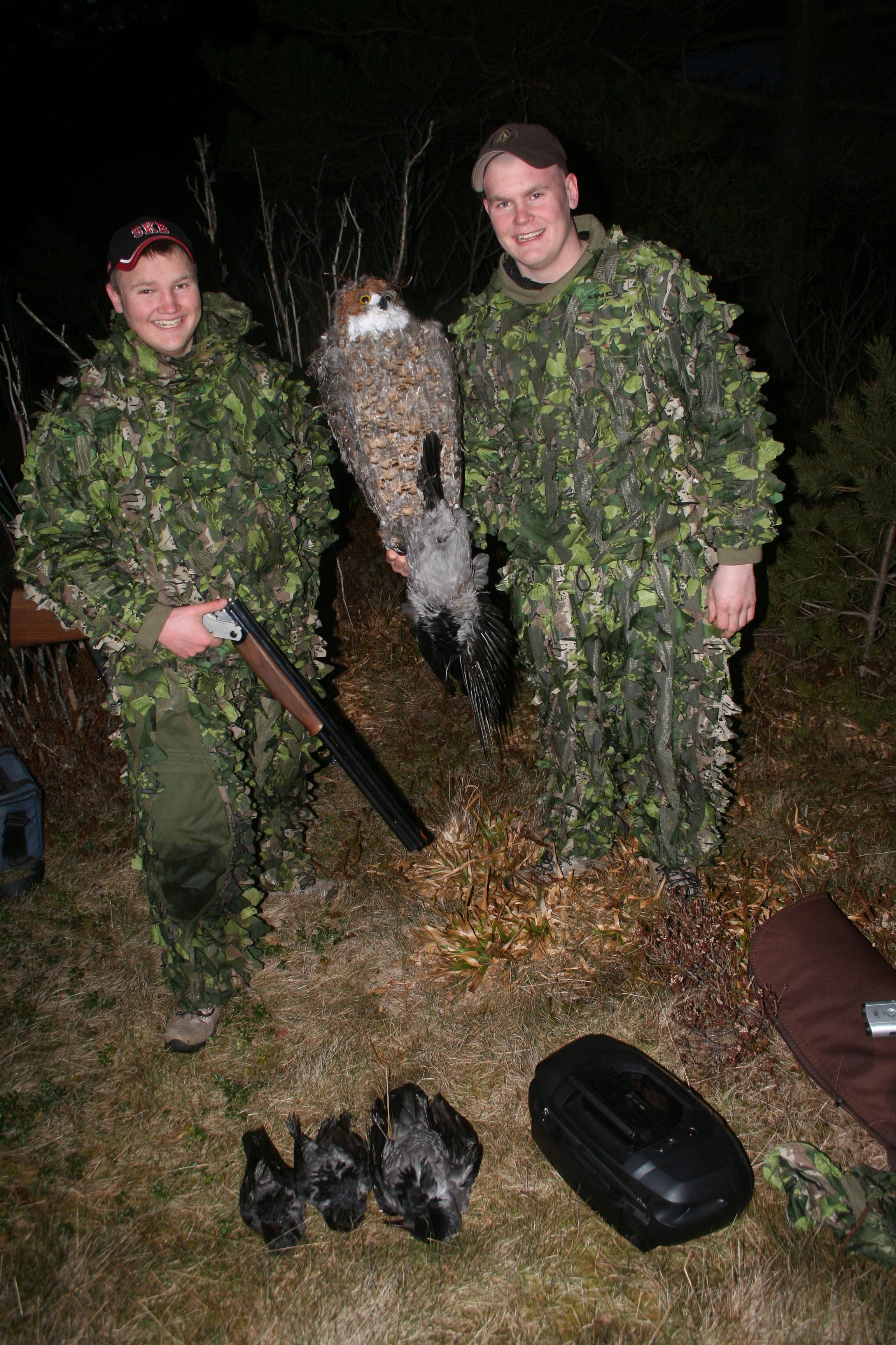 Kay og Raymond Skaar i Os i Hordaland, er på kråkejakt for nest siste gang 2011. Raymond leder predatorjaktkonkurransen knepent - kun med ei kråke! - og vil sette inn støtet med hjelp av en meget forsggjort hubro. Hver eneste fjær er limt på fuglen. Og den virker!