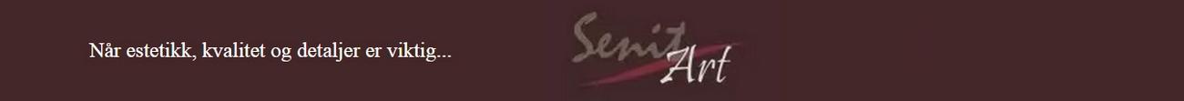 Senit Art - logo
