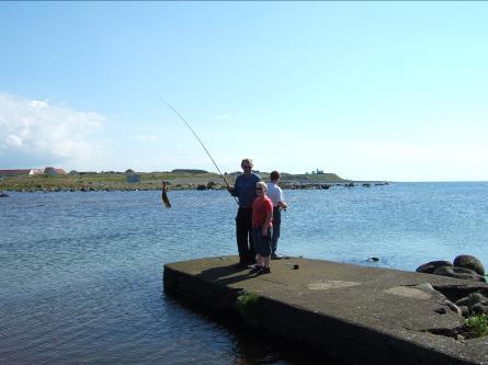 Fiske i Hå-elva