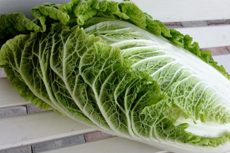 Salater/Kinak__l.jpg