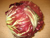 Salater/radicchio.jpg