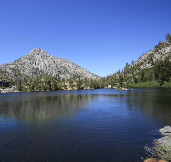 Stille vann i naturen