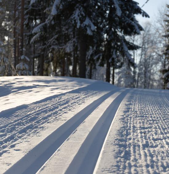 Nykjørte skispor
