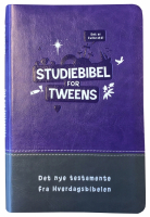 Studiebibel for tweens - LILLA (BOK)